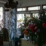 茎(kuki)|瓦町駅裏近くにできたお花屋さん