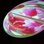 [豊島アートガイド]ピピロッティ・リスト|あなたの最初の色(私の頭の中の解-私の胃の中の溶液)