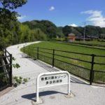 香東川自転車道のチャリツアーを2パターン紹介。うどん屋とスイーツと銭湯があれば満足です!